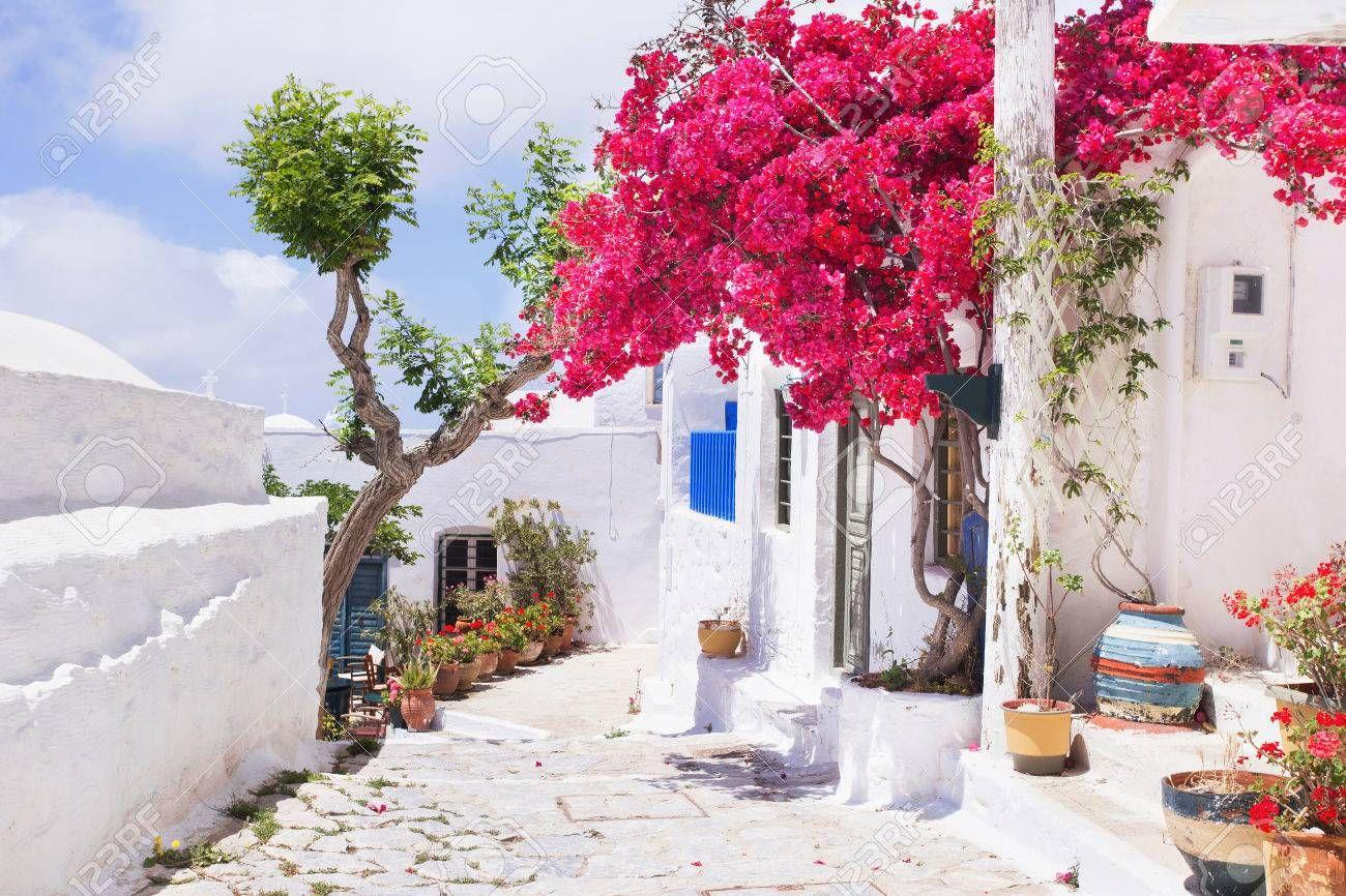 Stock Photo ギリシャ ギリシャのミコノス島 ミコノス