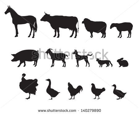 Farm Animals Vector Set Livestock Farm Animal Silhouette Animal Vector Farm Animals