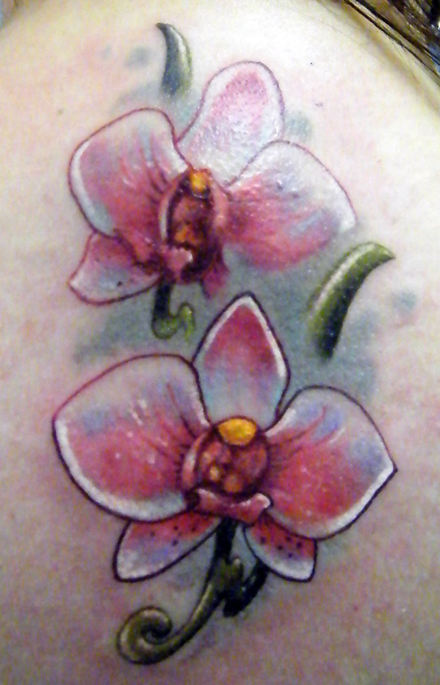 Orchid tattoos orchid tattoo on neck tattoo picture orchid i just want the small one on the bottom the orchid represents fertility something i lost buycottarizona