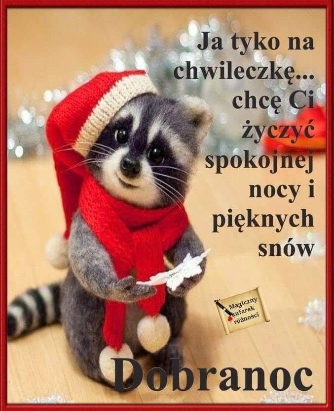 Pin by Wanda Swoboda on Dobranoc | Good morning, Humor ...