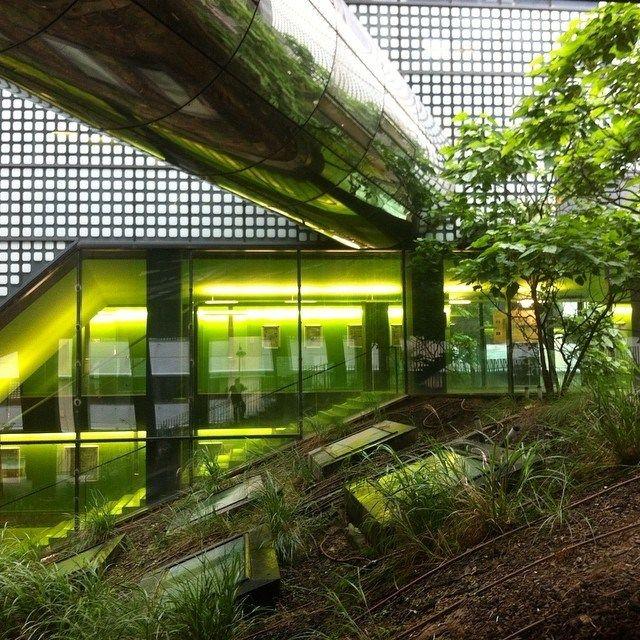 XTU _ UFR de Chimie Paris 7 // Interior patio of university paris diderot #paris13 #paris #university #corridor #metal #vegetation #patio #green #archiref #archdaily #teamarchi #architizer