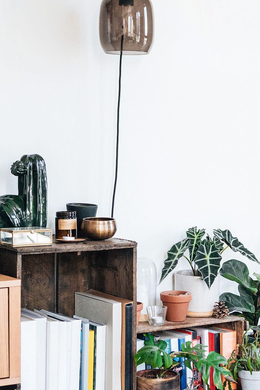 Mit Pflanzen das Zuhause bereichern 5 grüne Deko Ideen   Deko ...