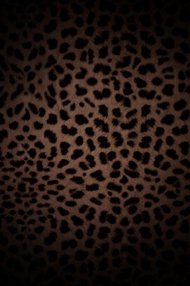 leopard wallpaper Leopard wallpaper