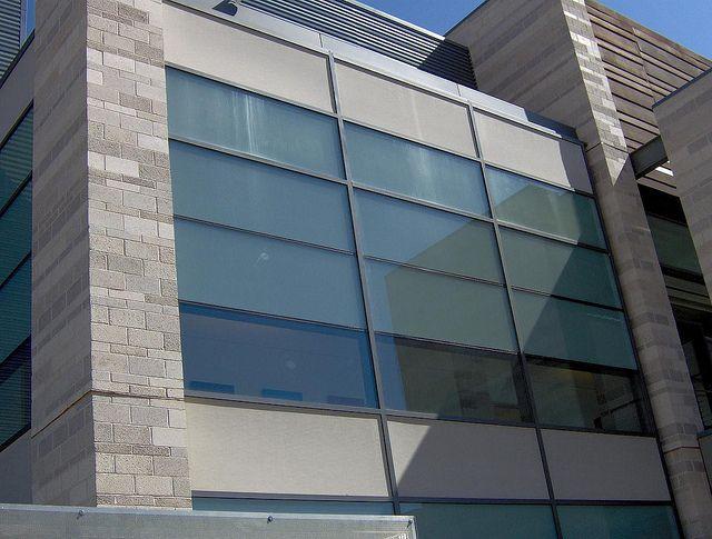6 Reasons Fiberglass Windows Are Better Than Vinyl Fiberglass Windows Windows Window Vinyl