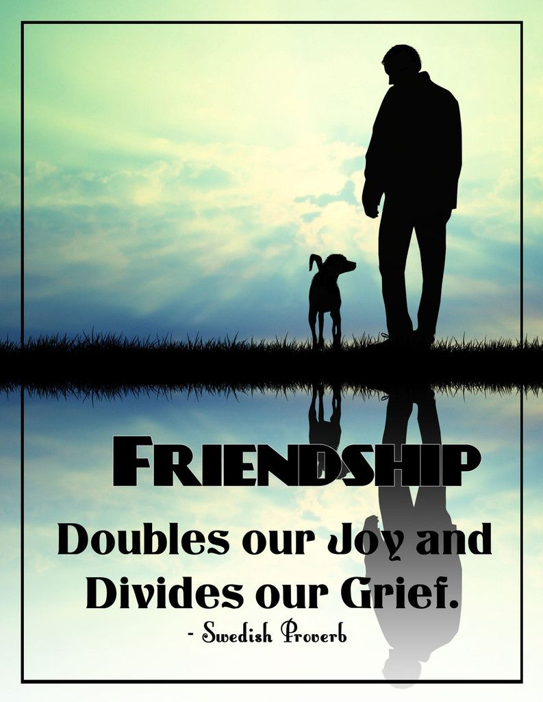 Friendship doubles our joy and divides our grief we