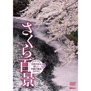 Beautiful Japanese Sakura http://j-fair.com/product.php?id=140