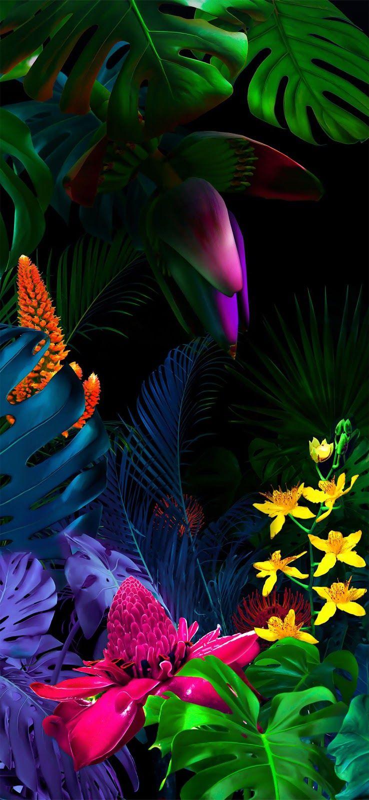 Lg G8 Wallpaper Floral Wallpaper Desktop Samsung Wallpaper Flower Wallpaper