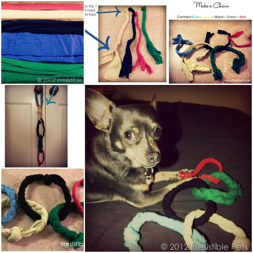 Diy Olympic Rings Dog Toy Diy Pets Projects Pinterest