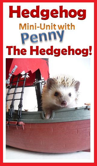 Hedgehog Biology Mini Unit Lesson Plan Mini Units Nature Kids Life Skills Special Education