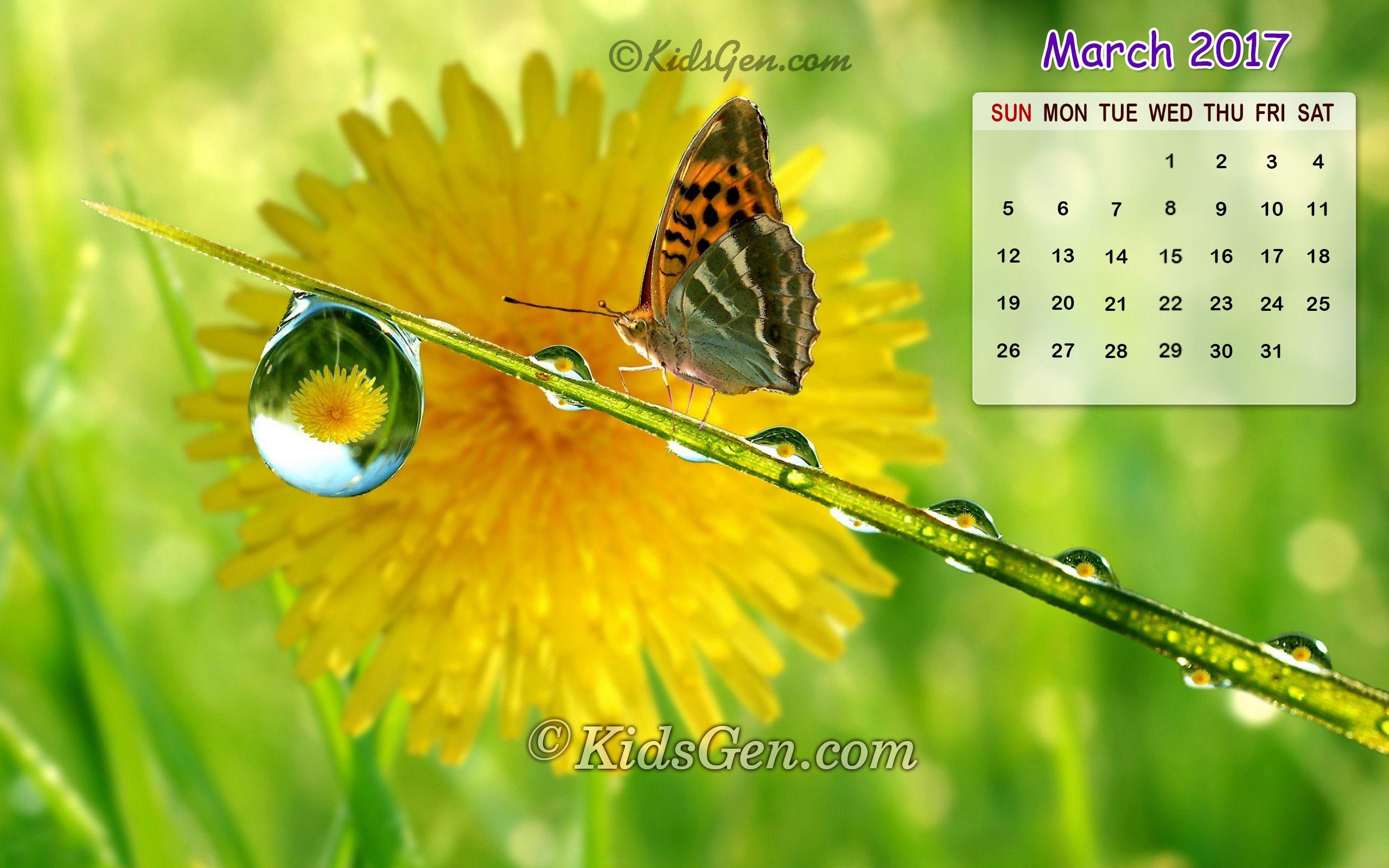 July Calendar Iphone Wallpaper Printable Editable Blank