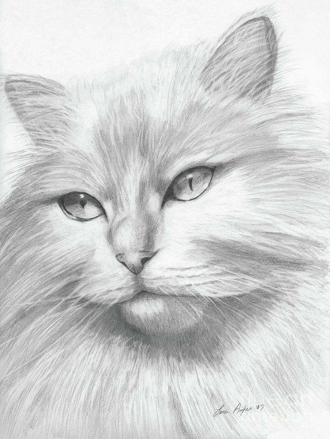 рисование пальчиками рисунки карандашом кошек фото для нападения