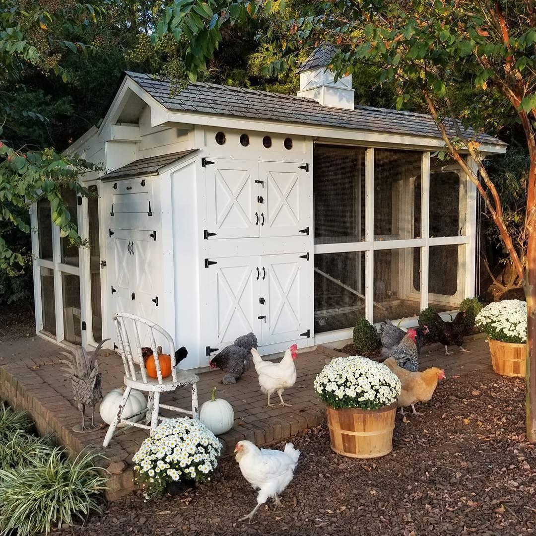 28072aa370bda9b7cd7cda4f953fd18c - Better Homes And Gardens Chicken Coop Plans