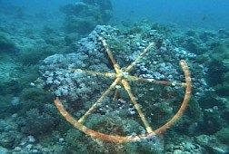 Chariot Wheels Found At The Bottom Of The Red Sea