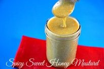 Are you a Sweet Spicy Honey Mustard Fan? You will love this Best Sweet Spicy Honey Mustard from my daughter Carly. It truly has some sweetness with a kick.