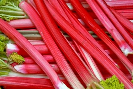 Rhubarb - A Dixie Cup with Sugar, wet the Rhubarb with cold water and dip like a dip stick and enjoy. Yummo!