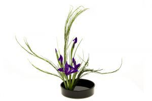 Iris flower arrangement