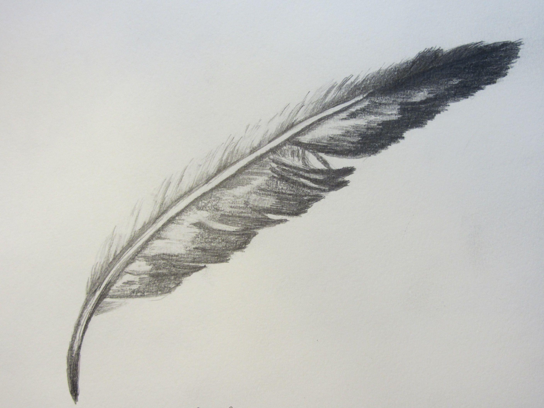 plume de ré