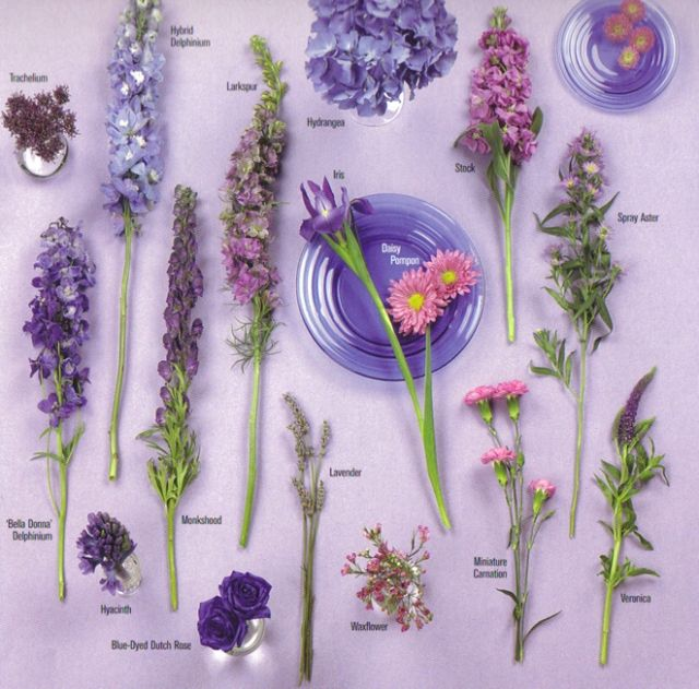 Awesome Lavender Flowers For Wedding Photos - Styles & Ideas 2018 ...