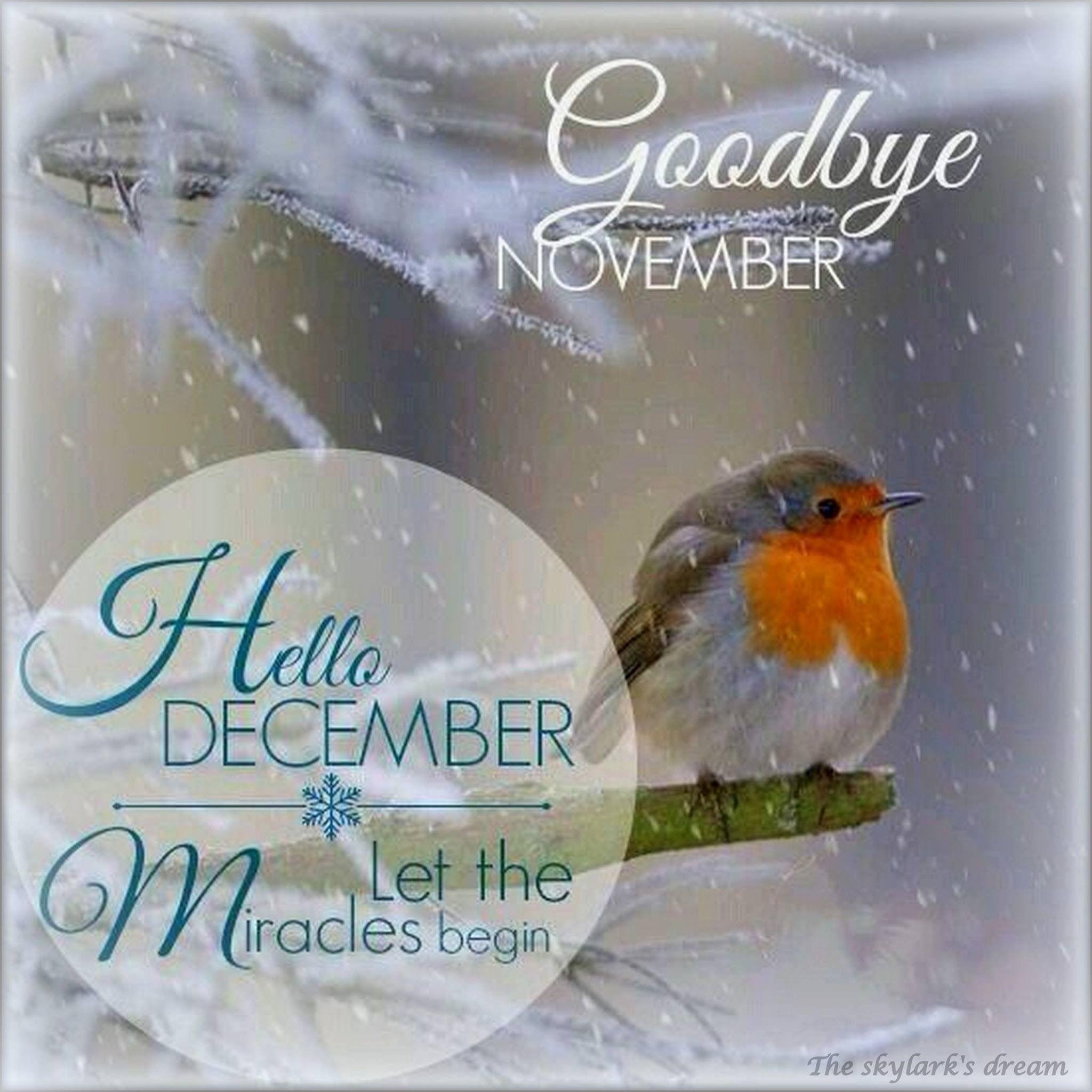 Goodbye novemberhello december greetings more qoutes kristyandbryce Choice Image