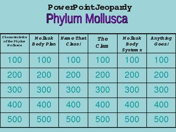 phylum mollusca questions answers