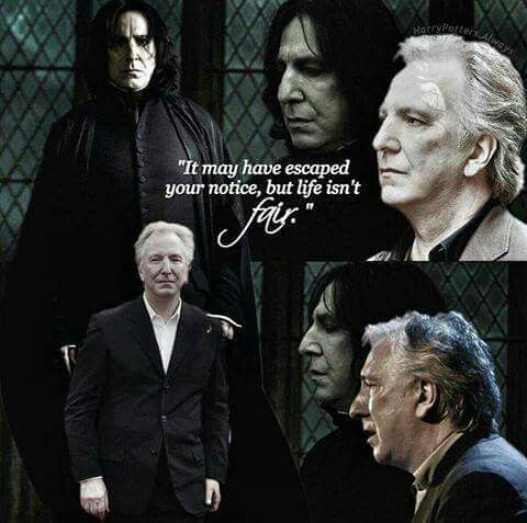 Pin By Magicbird15 On The Chosen 1 Harry Potter Severus Harry Potter Severus Snape Snape Harry