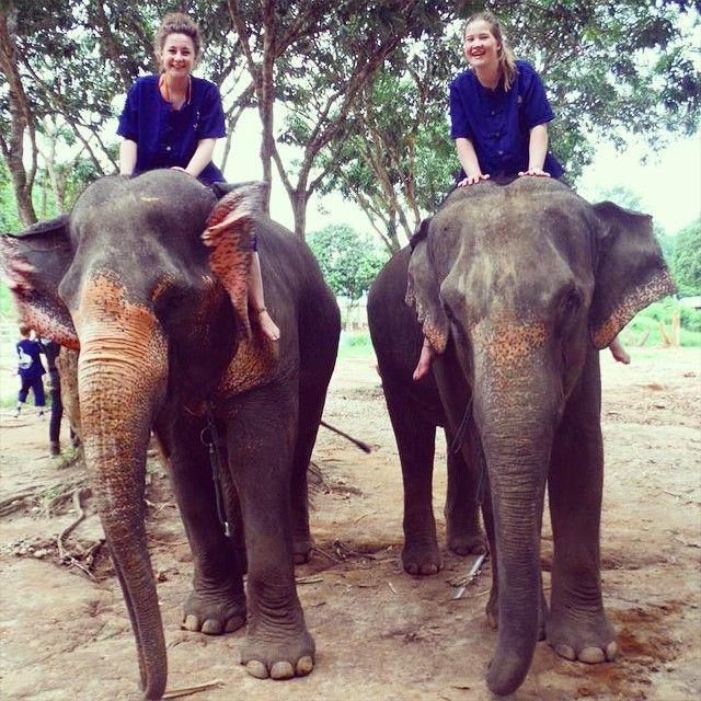 Sexy Women riding bareback barefoot on Elephants in the Jungle/Sexy Frauen reiten sattelos barfuß auf Elefanten im Dschungel . mahouttraining( #mahouttraining )