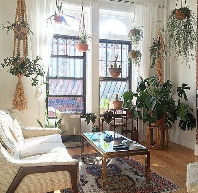 Apartment Studio City Loft Small E Living Room Modern Bohemian Home Decor Indoor Plants Hipster