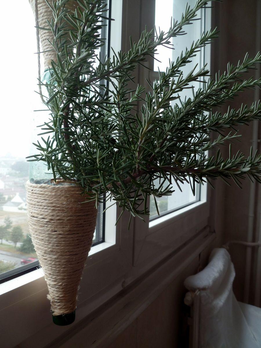 Windowfarms - Romarin