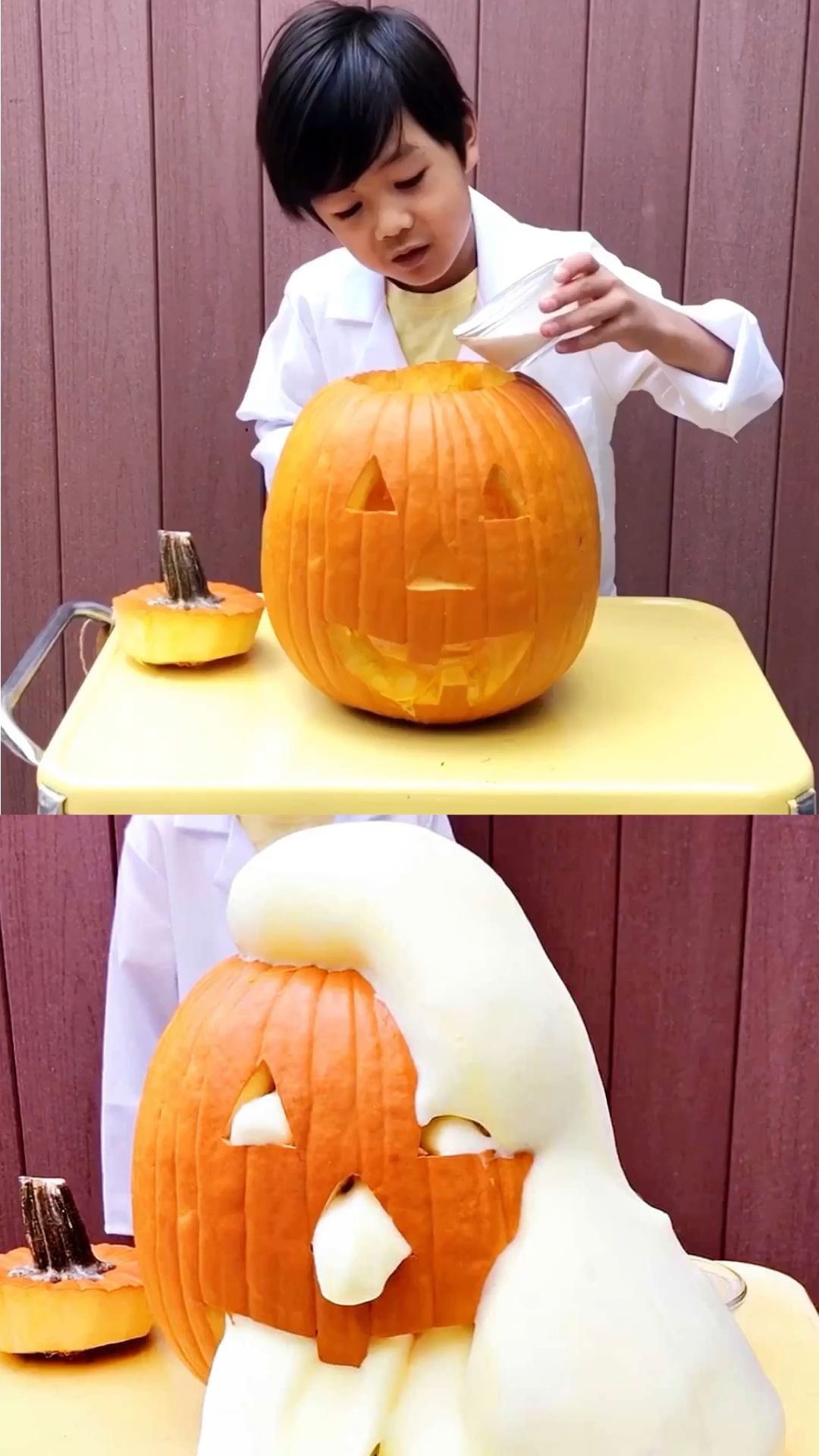 Pumpkin Elephant Toothpaste Science Experiment