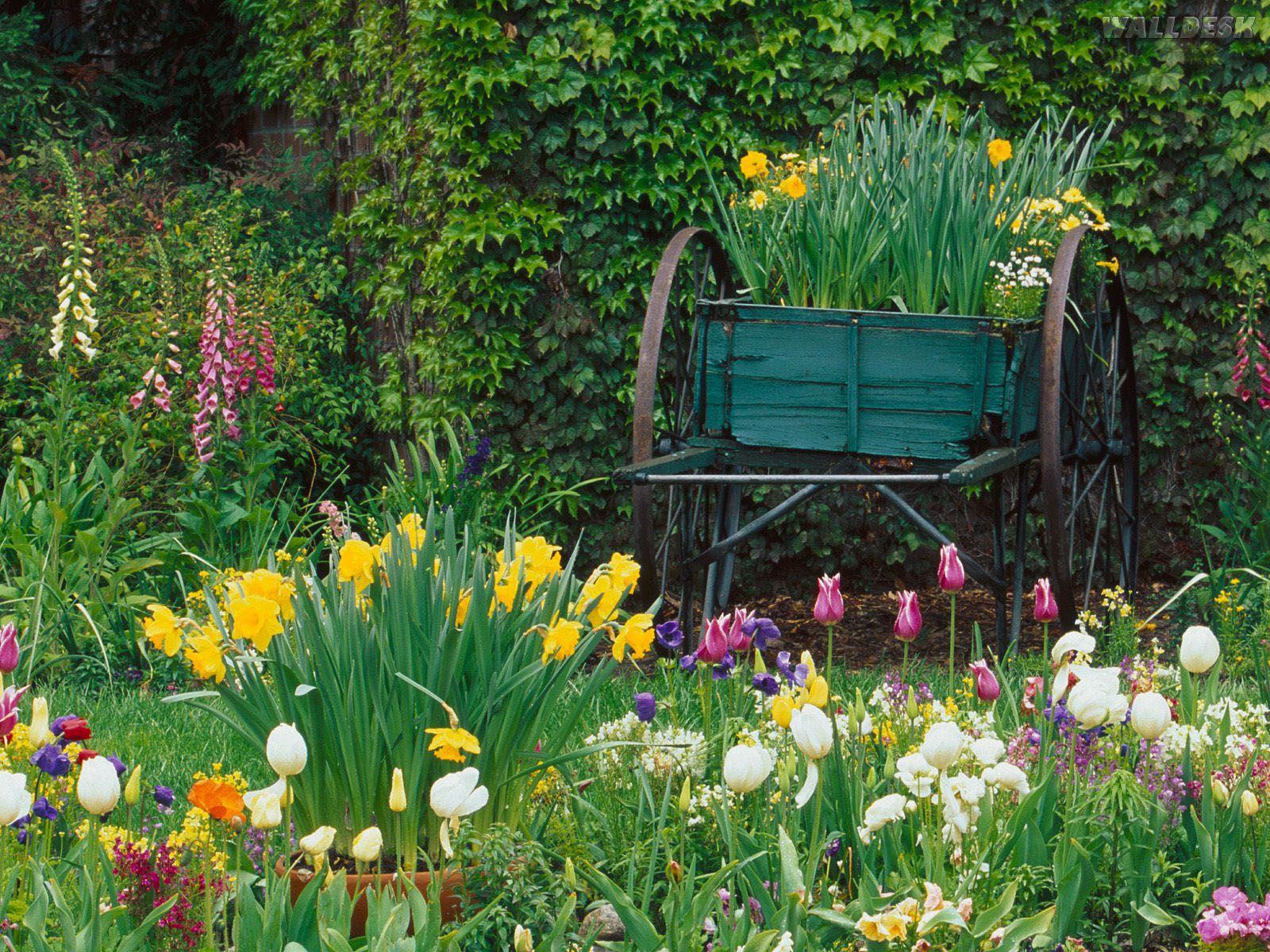 08966_jardim-para-um-belo-descanso-na-california.jpg (1600×1200)