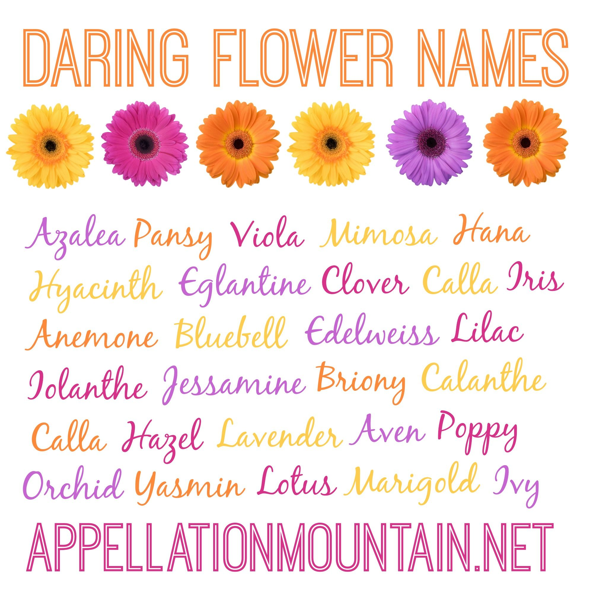 Daring Flower Names Are A Huge Category From Vintage Picks Like Dahlia To Rarely Used Possibilities Like Edelweiss Flower Names Unique Girl Names Girl Names