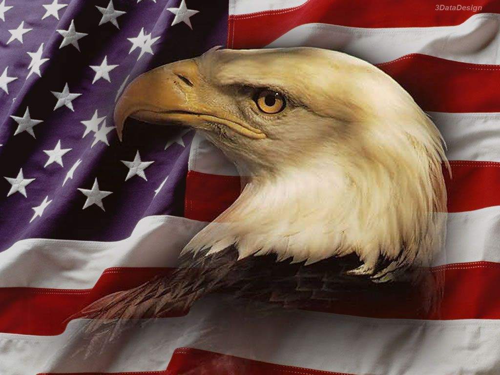 Us Flag Wallpaper Wallpaper Id 4 Eagle American Flag