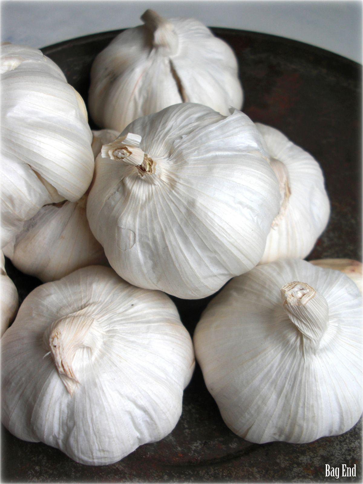 Kitchen details - garlic / Keittiön yksityiskohtia - valkosipuli