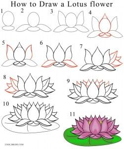 How To Draw Lotus Flower Step By Step Drawing In 2019