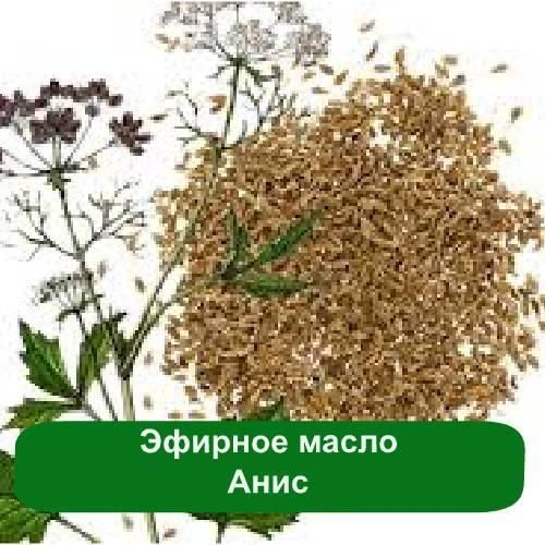 эфирные масла от паразитов в организме
