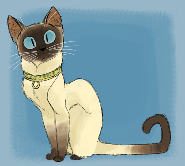 I Have A Male Siamese Named M K Stands For My Kitty Cat Cartoon Images Cat Art Cat Drawing