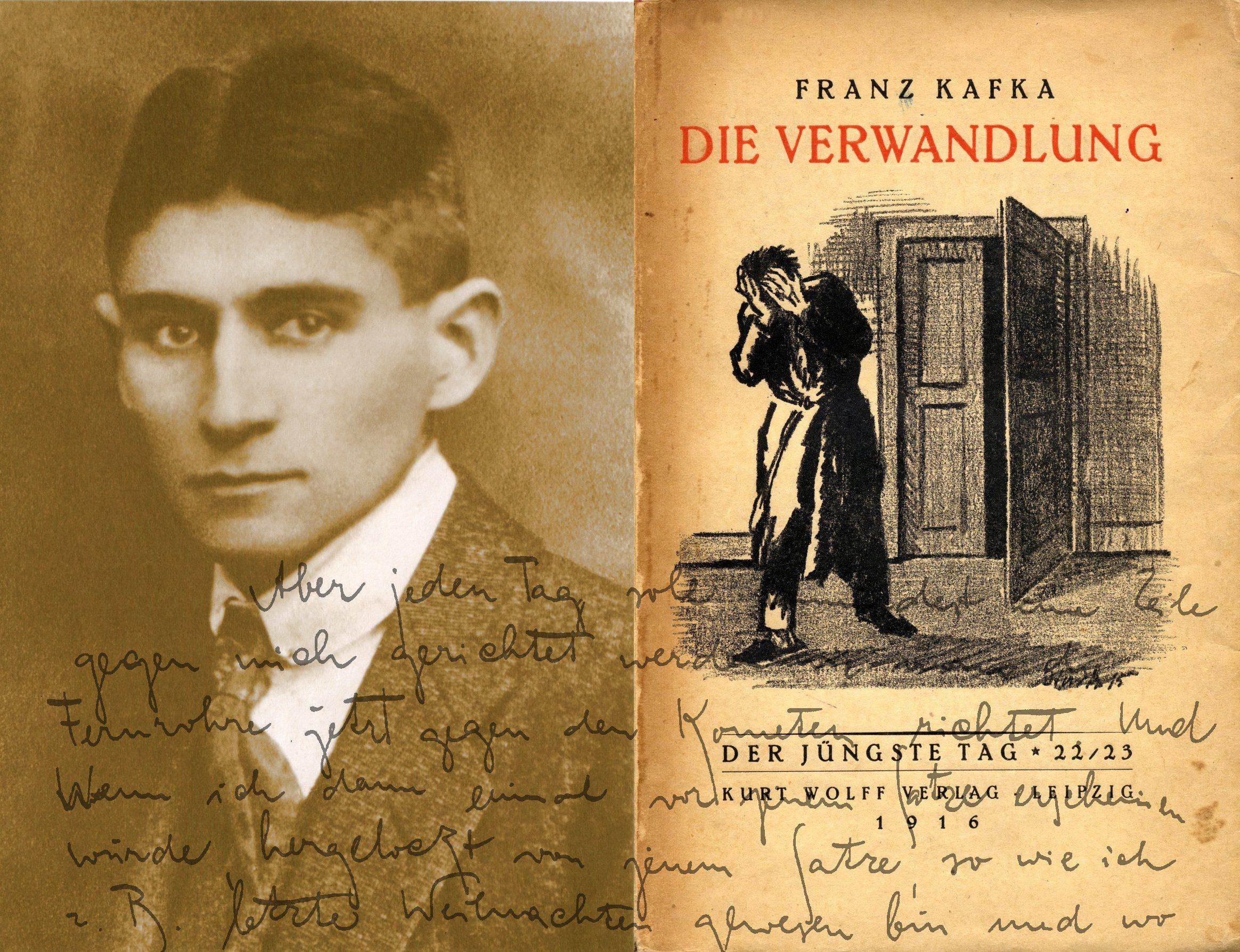 I really need help with my essay on the Metamorphasis by Franz Kafka?