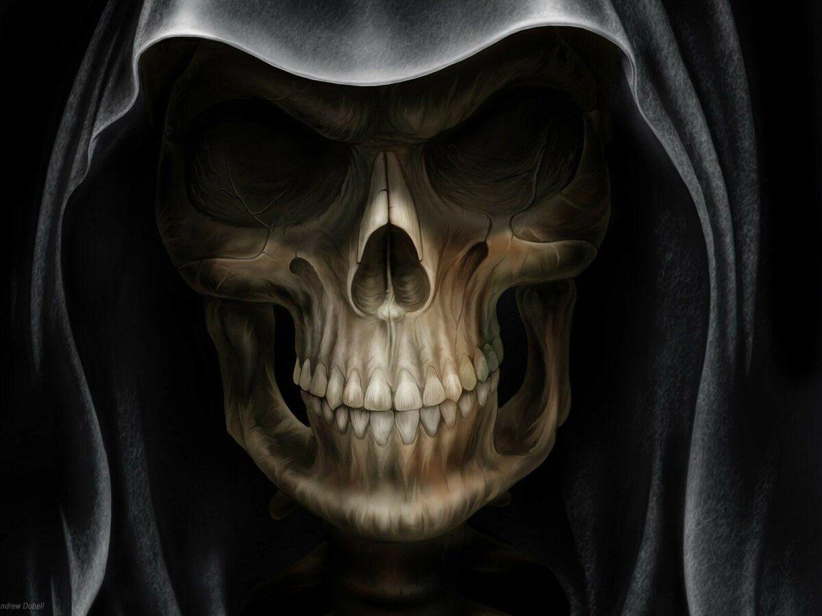 خلفيات جماجم جمجمة Skull عالية الوضوح 15 Telefon Duvar Kagitlari