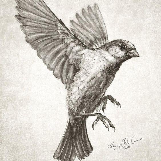 Kenny Cramer On Twitter Flying Bird Tattoo Bird Drawings Birds Tattoo