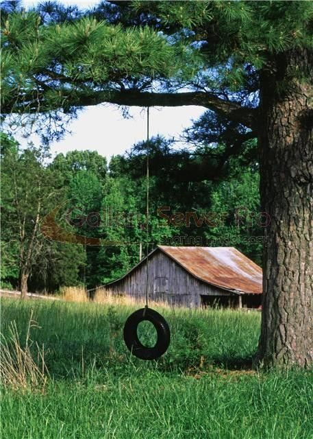 Reminds me of my childhood. Everyone had a tire swing and a barn!  A much simpler time.