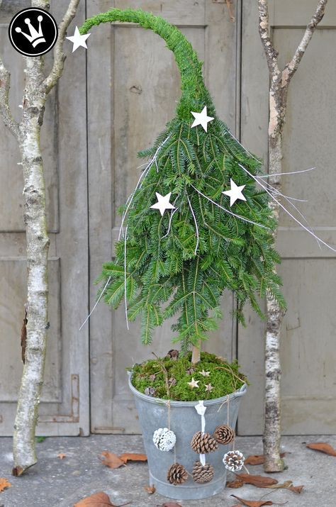 tannenbaum mit zipfelm tze winterdeko aus naturmaterial. Black Bedroom Furniture Sets. Home Design Ideas