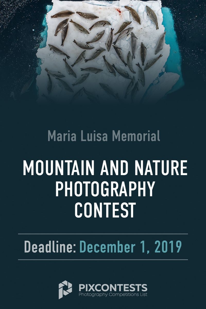 Memorial Maria Luisa 2019 Mountain And Nature Photography Contest Photography Contests Nature Photography Photography Competitions