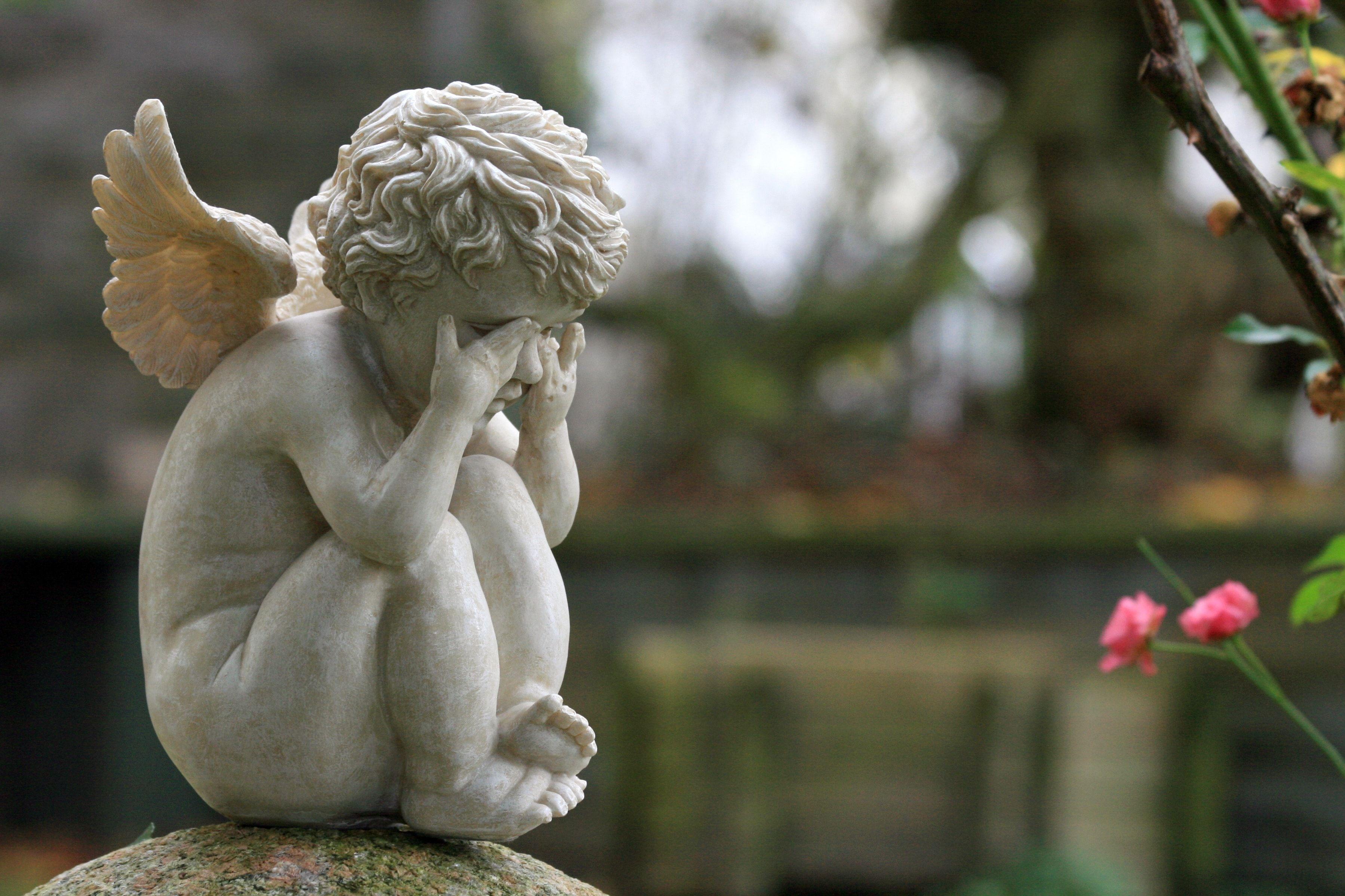 Tot aufgefundener Säugling in Landshut lebte bei Geburt noch