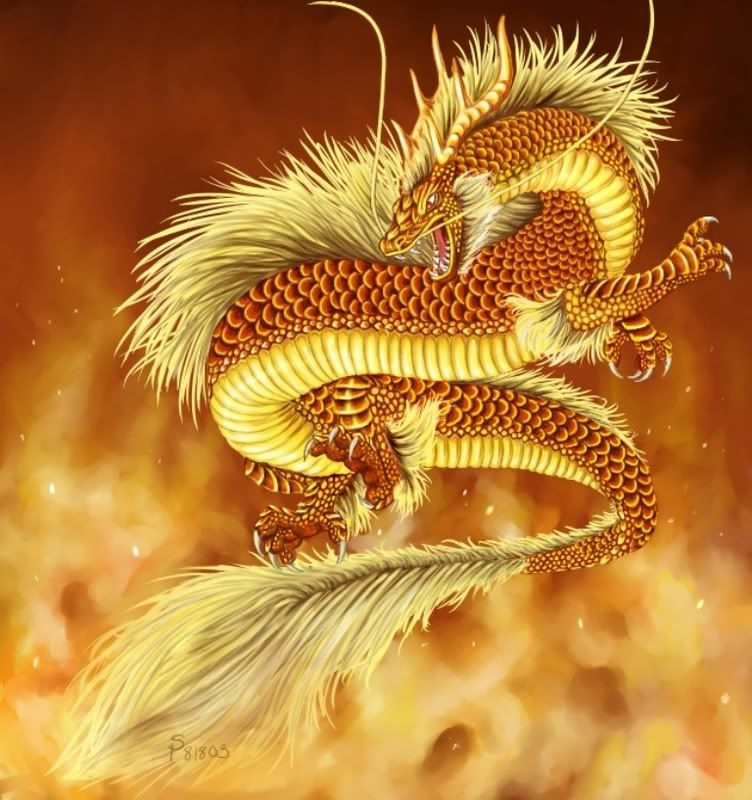 asian dragon images | Chinese Dragon Pictures ~ Site-Dragon ...
