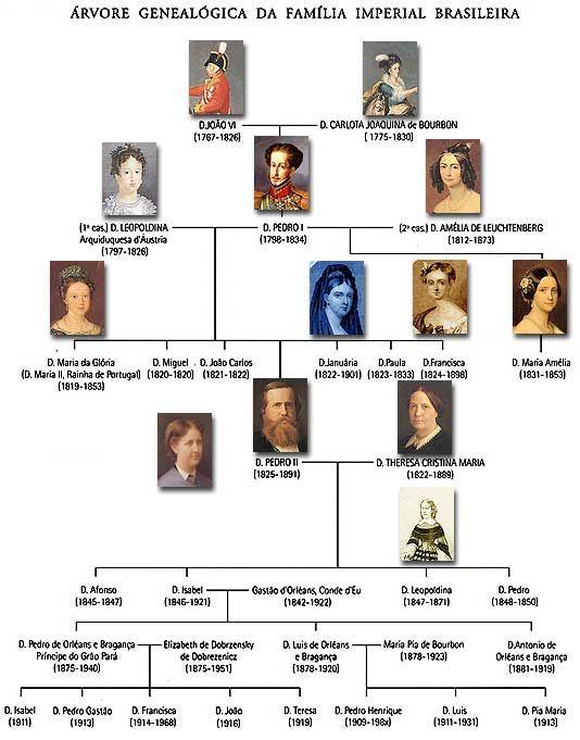Arvore Genealogica Da Familia Imperial Brasileira Brasil Imperio