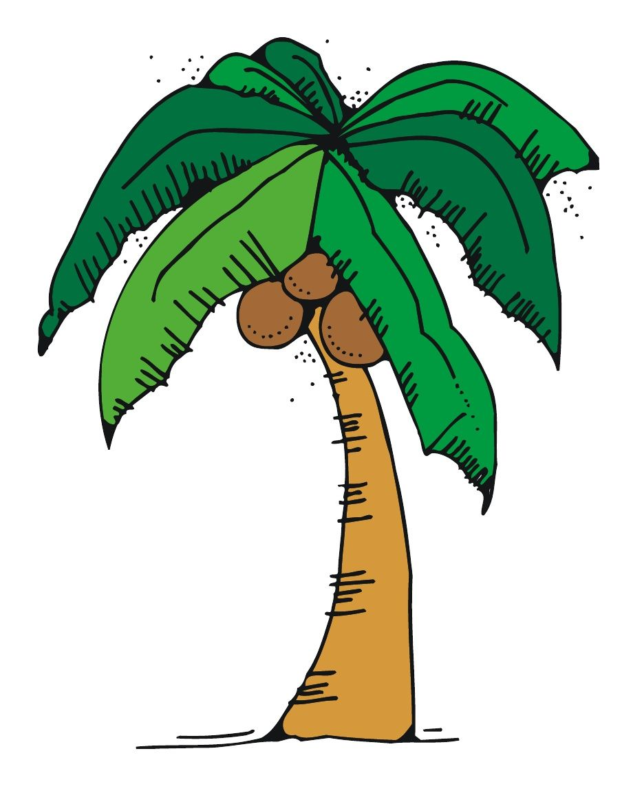 Free chicka chicka boom boom tree template with letters for Printable coconut tree template