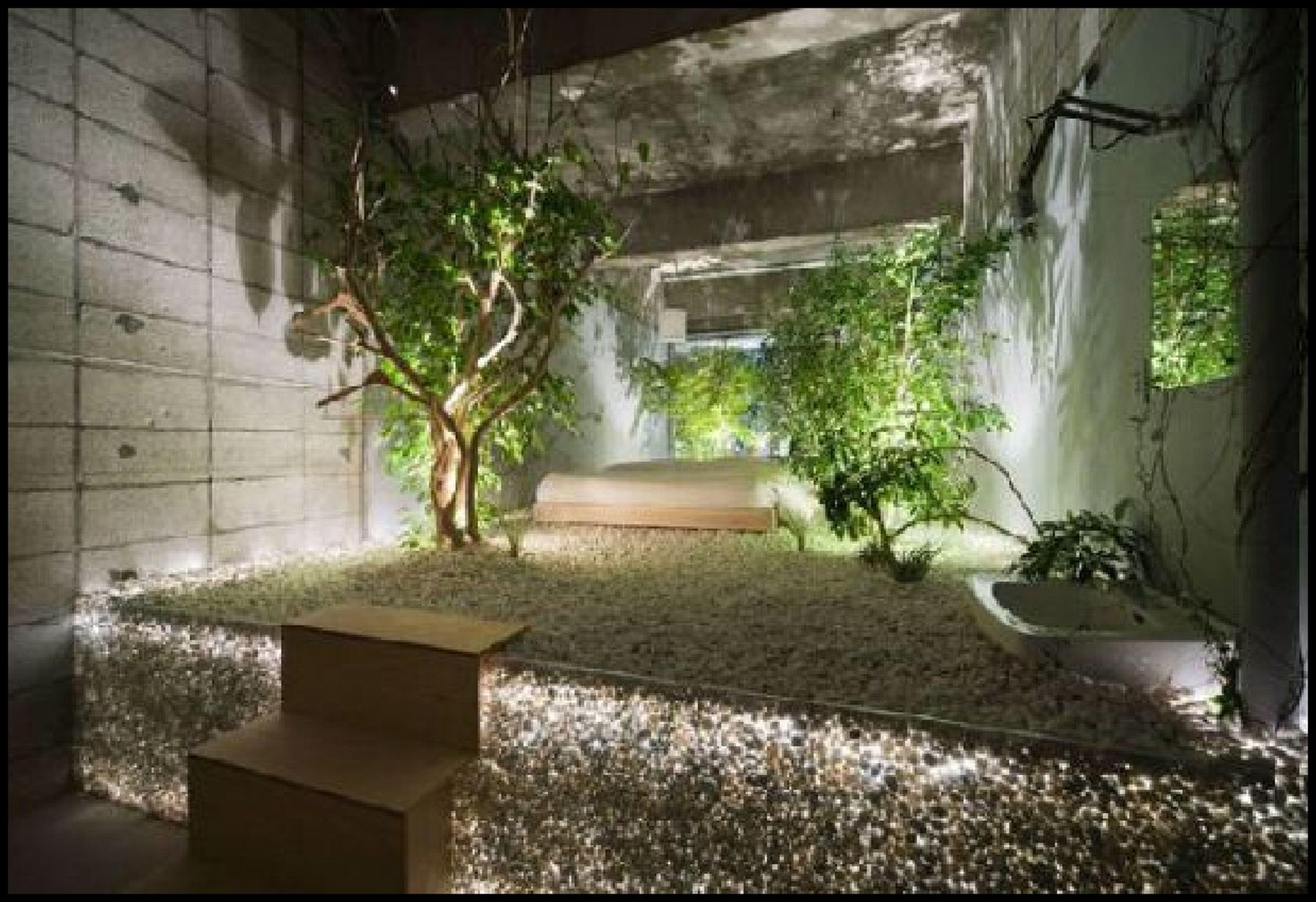 Interior Garden Home Decor Futuristic In Hyderabad 10x10