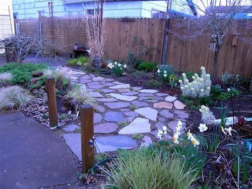 Sustainable Design Living Elements Landscape Landscape Design Dog Friendly Backyard Pet Friendly Yard