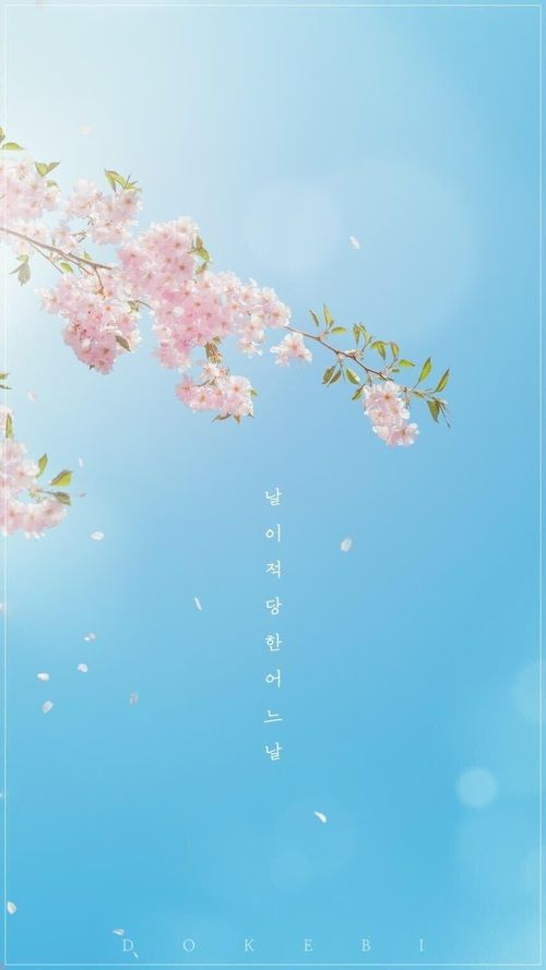 Image in Kdrama Wallpapers  collection by NOUF