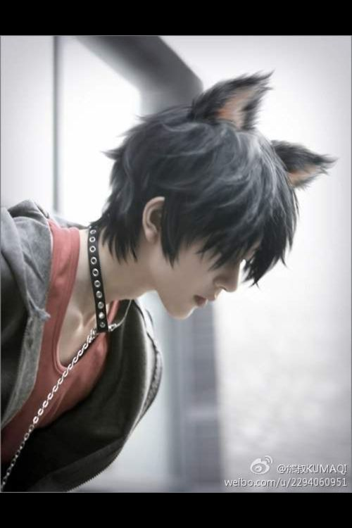 neko boy PUURFECTION!